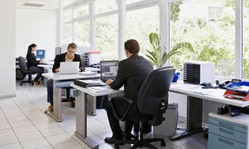 Colleagues designing websites